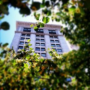 McKay Tower Condos