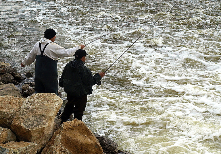 Fishing in grand rapids for Grand river fishing